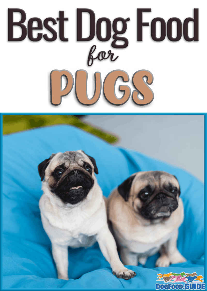 10 Best Dog Food For Pugs In 2020