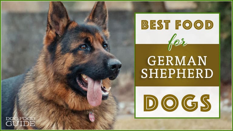 best dog food for german shepherd puppy best dog food for german shepherds top gsd puppy adult 3563