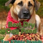 Best Dry Dog Food: Top 7 Dry Kibble Dog Food Brands of [year] Reviewed & Rated
