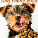 6 Best (Healthiest) Dye Free Dog Foods: Our 2020 Review