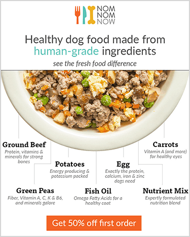 10 Worst Dog Foods Of 2019 And 5 We Recommend Feeding In 2019