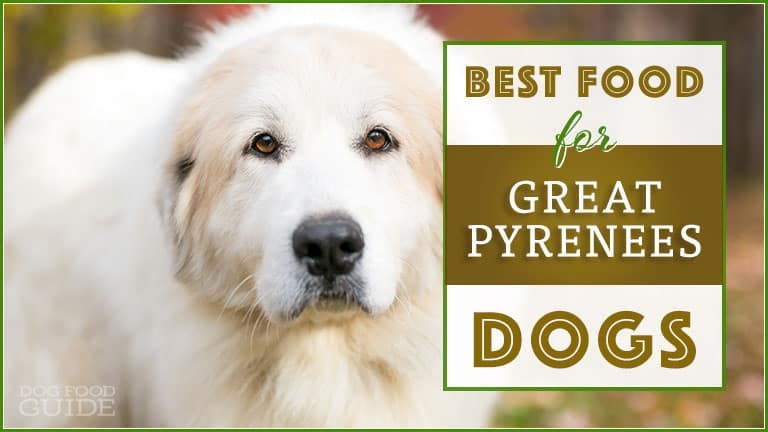Dog Food For Great Pyrenees 2020