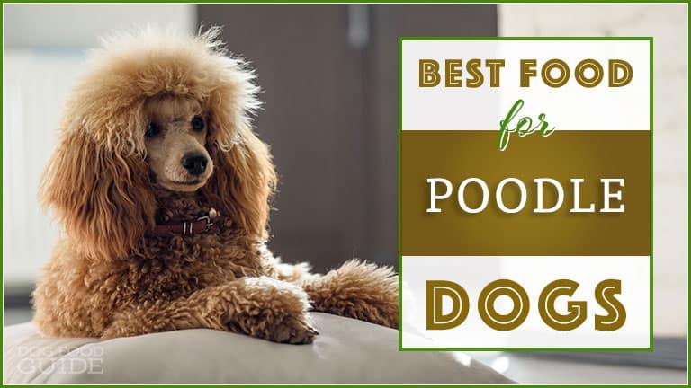 Best Dog Food For Poodles Top Puppy Adult Senior