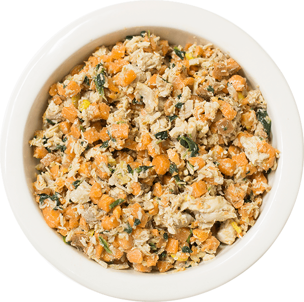 10 Best (Healthiest) Dog Foods for Cockapoos in 2020 3